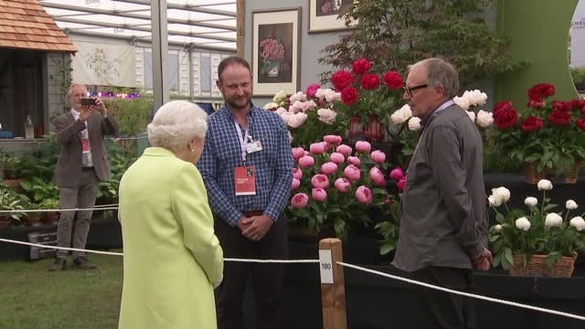 chelsea flower show 2019: queen visits with duke and duchess of cambridge; england: london: chelsea: royal hospital chelsea: int gvs queen along... - festival dei fiori di chelsea video stock e b–roll