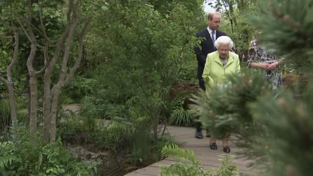 chelsea flower show 2019: queen visits with duke and duchess of cambridge; england: london: chelsea: royal hospital chelsea: queen along through... - festival dei fiori di chelsea video stock e b–roll