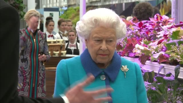 vídeos y material grabado en eventos de stock de prince harry visits sentebale garden / queen begins annual tour england london chelsea flower show ext queen elizabeth ii along during tour of... - reina persona de la realeza