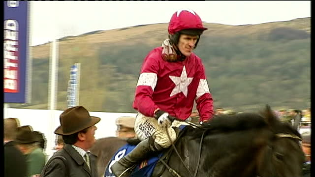 bobs worth wins horse in paddock at end of race sweating profusely and steam rising from its back jockey riding horse back into paddock at end of... - vox populi stock videos and b-roll footage