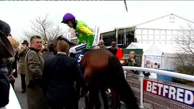 vídeos de stock, filmes e b-roll de 'synchronised' wins paul nicholls looks on as kauto star ridden into paddock area paul nicholls interview sot ruby has done what is best for him... - cheltenham