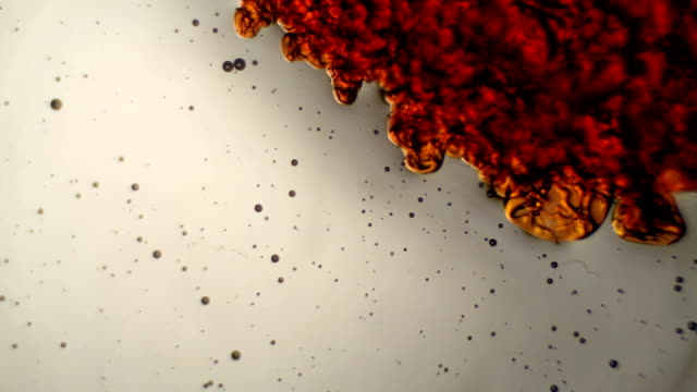 vídeos de stock e filmes b-roll de reacção química sob microscópio - reacção química