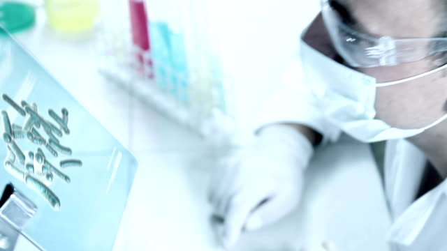 Chemist at Work In A Laboratory.