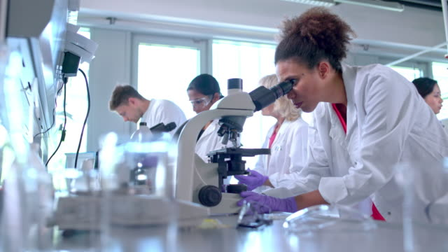 chemist examining blood through microscope - looking through an object stock videos and b-roll footage