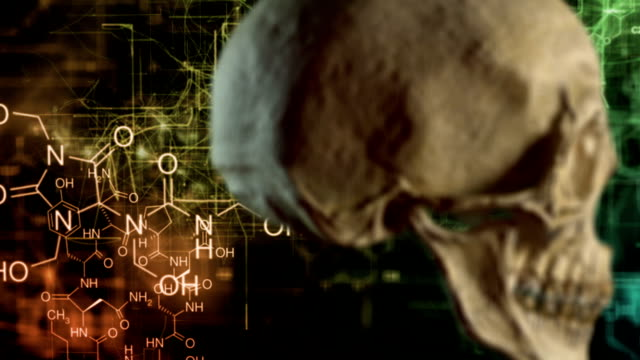 vídeos de stock, filmes e b-roll de crânio de química - lóbulo frontal