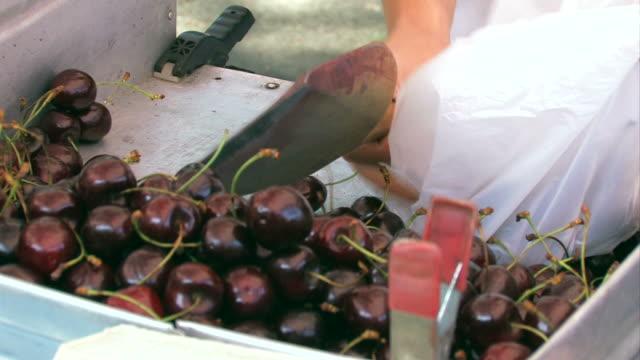 Cherries on the market
