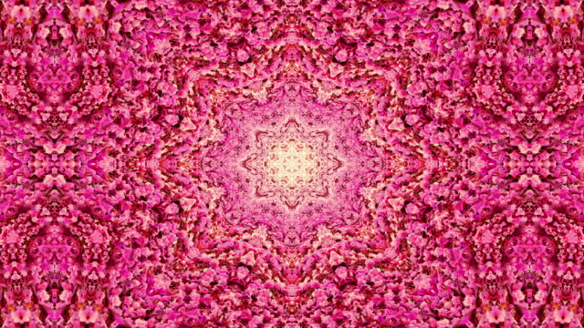 Cherry blossom flowers in spring kaleidoscope