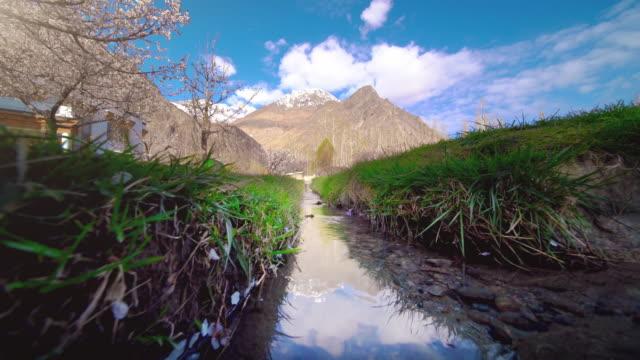 cherry blossom in nubra valley the desert, leh ladakh india - valley stock videos & royalty-free footage
