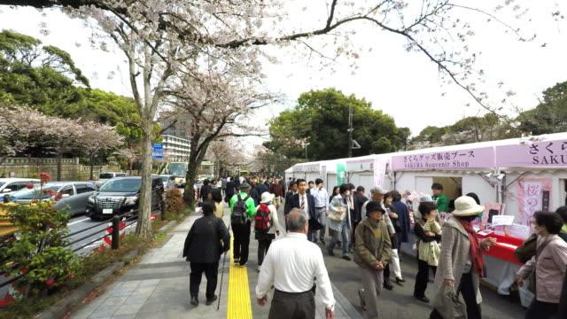 cherry blossom season in chidorigafuji - western script stock videos & royalty-free footage