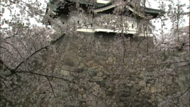 cherry blossoms and hirosaki castle - stone wall stock videos & royalty-free footage