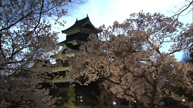 cherry blossoms and matsumoto castle - 城点の映像素材/bロール