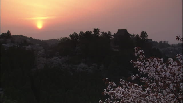 cherry blossoms and mount yoshino - 静かな情景点の映像素材/bロール