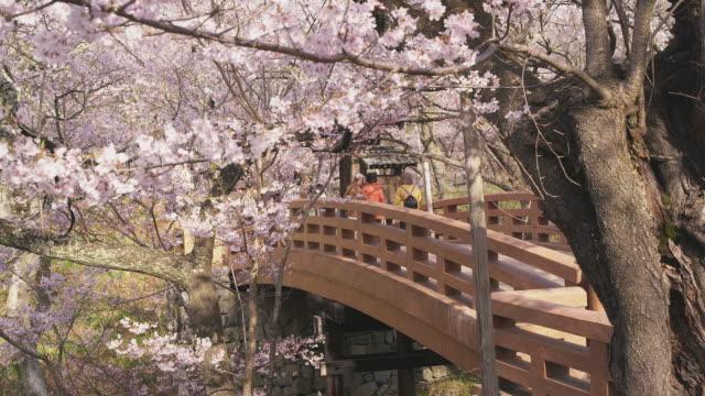 Cherry blossoms at Takato Castle Site