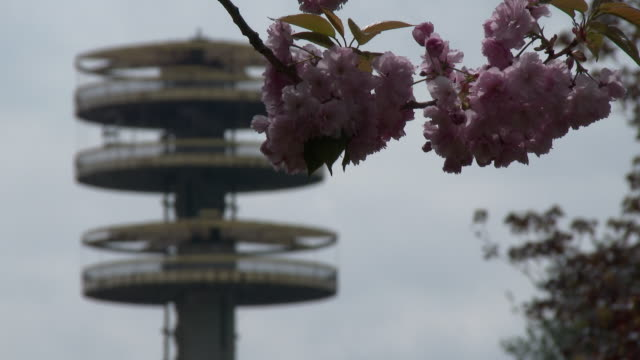 vídeos de stock, filmes e b-roll de cherry blossoms in bloom - ny world's fair observation towers, flushing meadows park - flushing meadows corona park