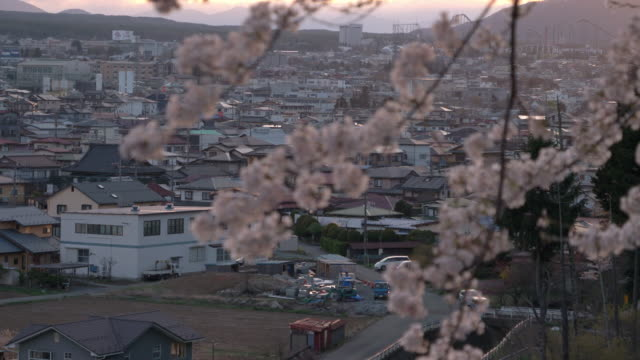 cherry blossoms swaying in the wind with a provincial city in the background - satoyama scenery stock videos & royalty-free footage