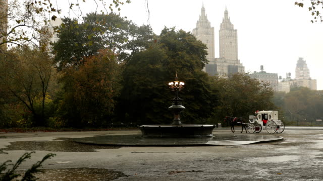 cherry hill autumn rain - fountain stock videos & royalty-free footage