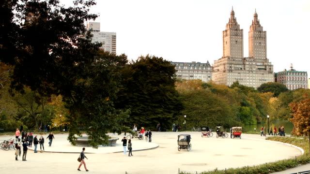 vidéos et rushes de cherry hill fontaine central park - voiture hippomobile