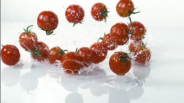cherry tomatoes, solanum lycopersicum, fruits falling into water against white background, slow motion 4k - tomato stock videos & royalty-free footage