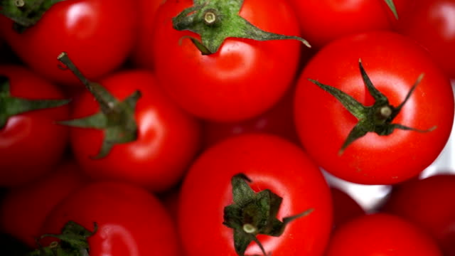 cherry tomatoes - tomato stock videos & royalty-free footage