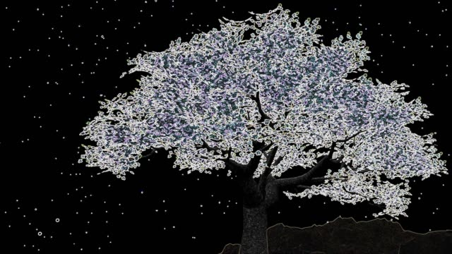 cherry tree at night with neon edges - blossom stock videos & royalty-free footage