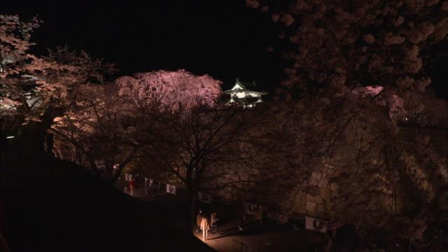 cherry trees in full bloom along the moat of hirosaki park illuminated at night - moat stock videos & royalty-free footage