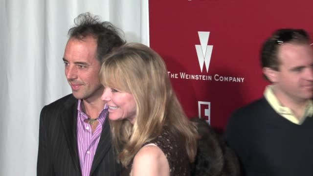 cheryl tiegs at the 2006 weinstein company preoscar party at the pacific design center in west hollywood california on march 4 2006 - pre party stock videos and b-roll footage