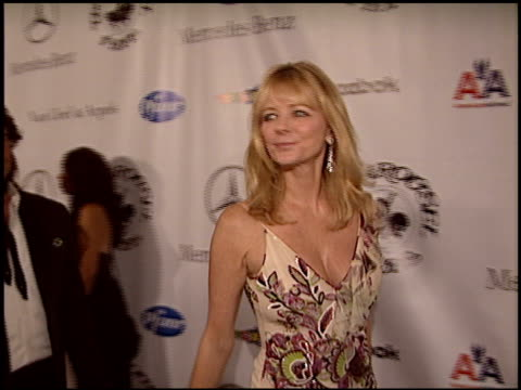 cheryl tiegs at the carousel of hope gala at the beverly hilton in beverly hills california on october 23 2004 - carousel of hope stock videos and b-roll footage