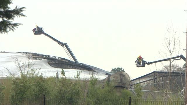 Chester Zoo visitors evacuated after fire ENGLAND Cheshire Chester EXT Firefighters in cherry pickers looking at the fire damaged Monsoon Forest...