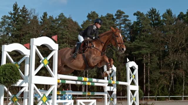 speed ramp kastanienpferd und sein reiter springen einen ochsen - pferderennbahn stock-videos und b-roll-filmmaterial