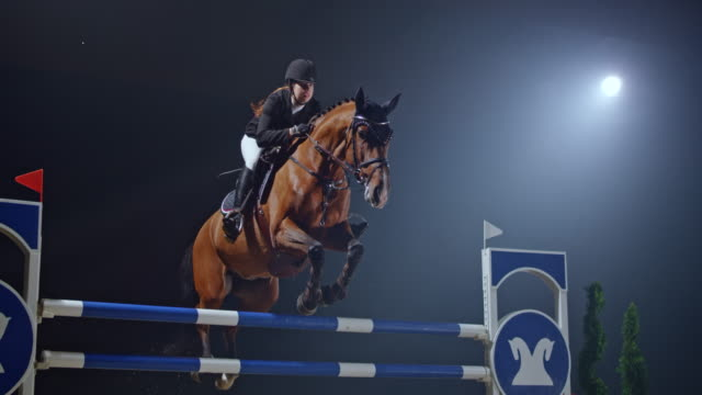 slo mo chestnut horse and it's rider jumping over a rail - bridle stock videos & royalty-free footage