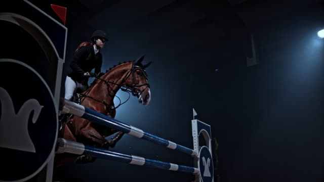 SLO MO Chestnut horse jumping a rail with his rider