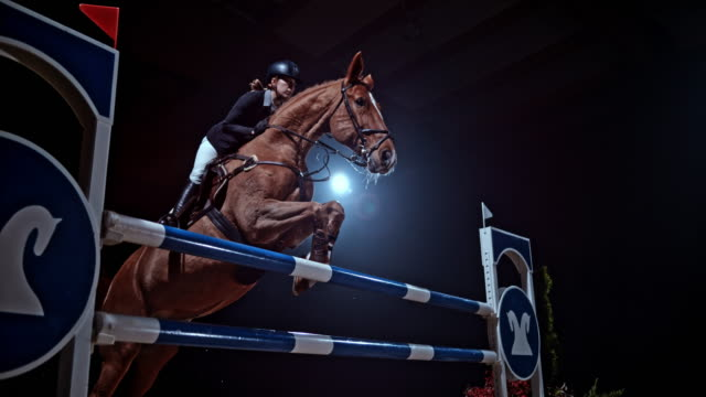 SPEED RAMP Chestnut horse jumping a rail with his rider