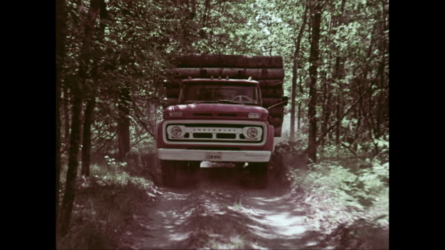 WS POV Chevrolet truck loaded with wooden logs moving on dirt track / United States