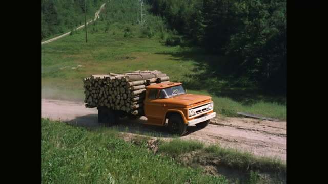 ws ts 1963 chevrolet truck loading logs and moving on dirt road / united states - holzstamm stock-videos und b-roll-filmmaterial