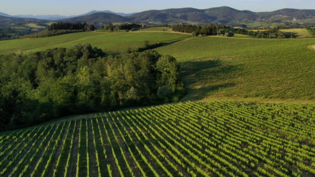 chianti wine region in tuscany, italy - toskana stock-videos und b-roll-filmmaterial