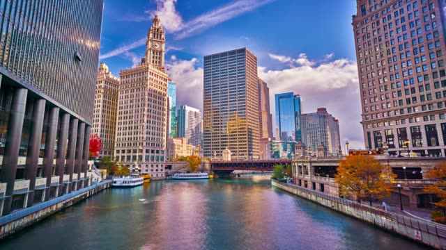 chicago business downtown. river. financial building. sunrise. - chicago river stock videos & royalty-free footage