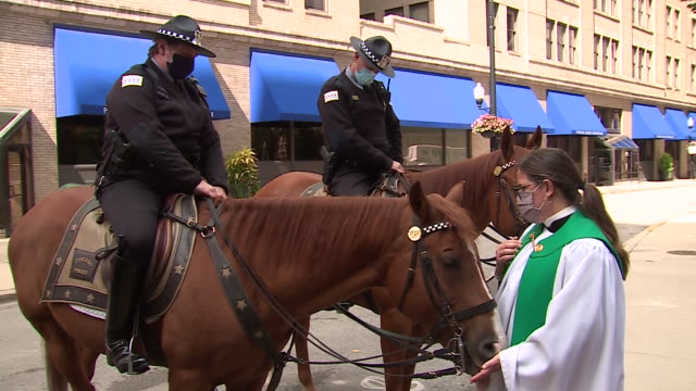 chicago, il, u.s. - a female priest blesses mounted police horses during an outdoor animal blessing event hosted by the archdiocese of chicago on... - hooved animal stock videos & royalty-free footage