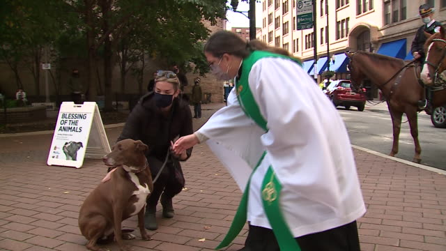 vídeos de stock e filmes b-roll de chicago, il, u.s. - a female priest preaches and blesses dogs during an outdoor animal blessing event hosted by the archdiocese of chicago on... - benção