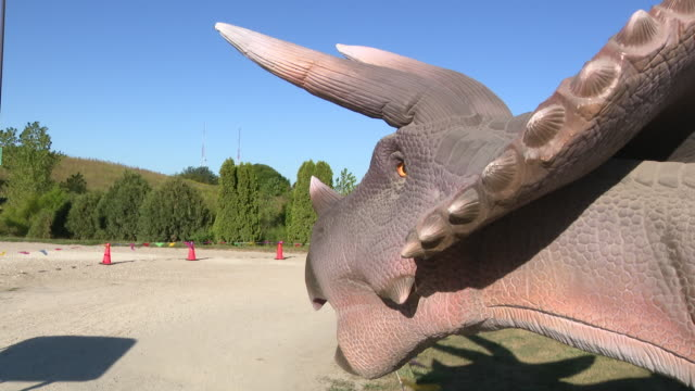 wgn chicago il us a triceratops model at the dupage county fairgrounds drivethru display on saturday september 5 2020 at the dupage county... - dupage county stock videos & royalty-free footage