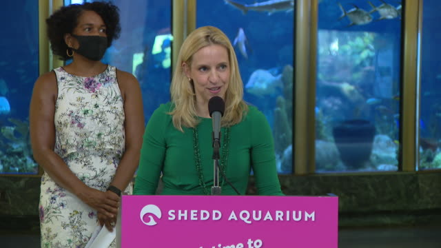 vidéos et rushes de wgn – chicago il us bridget coughlin ceo speaking to media as shedd aquarium reopens after closing due to covid19 on friday july 3 2020 - écriture européenne