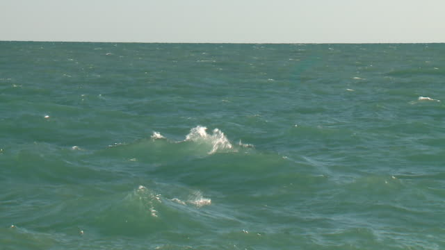 wgn chicago il us chopping waters on lake michigan along beach on saturday august 24 2019 - lago michigan video stock e b–roll