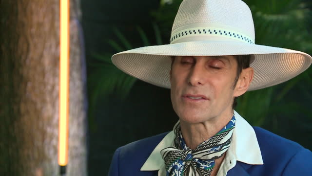 chicago, il, u.s. - interview with perry farrell, creator of lollapalooza, at 2019 lollapalooza festival, on thursday, august 1, 2019 - perry farrell stock videos & royalty-free footage