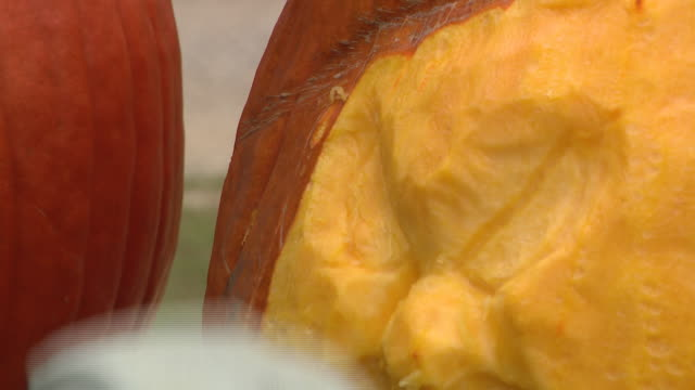 chicago, il, u.s. - jack o'lantern and a master pumpkin carver carves a face in a pumpkin at all seasons orchard on saturday, october 3, 2020. all... - other stock videos & royalty-free footage