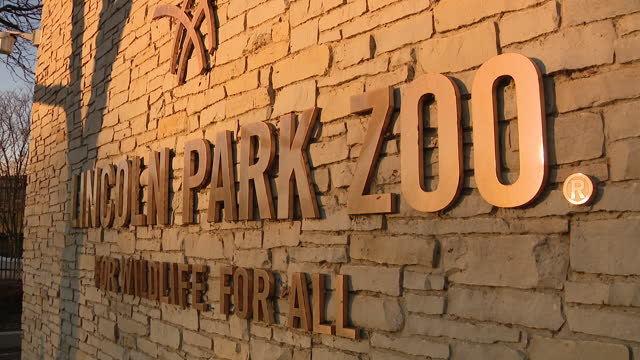 vídeos y material grabado en eventos de stock de chicago, il, u.s. - lincoln park zoo name sign at entrance to reopened zoo after months of closure due to covid-19 pandemic. lincoln park zoo... - zoológico de lincoln park