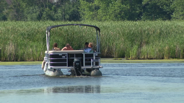wgn – chicago il us people sunbathing on pontoon boat during staycations at the chain o'lakes which is a waterway system in northeast illinois... - aquatic organism stock videos & royalty-free footage