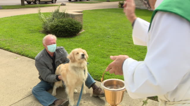 chicago, il, u.s. - priest sprinkling holy water on pets at pet blessing during feast day of st. francis of assisi in chicago. sunday, october 4,... - sprinkling stock videos & royalty-free footage