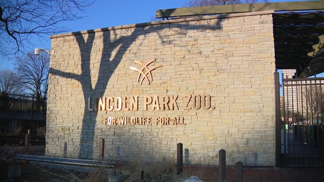vídeos y material grabado en eventos de stock de chicago, il, u.s. - signage of reopened lincoln park zoo, with new safety rules due to covid-19. lincoln park zoo reopened to the public on march 5,... - zoológico de lincoln park