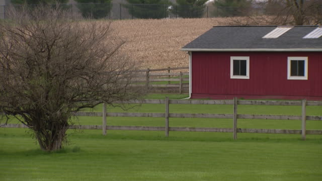 wgn chicago il us views of empty rural county on thursday april 23 2020 - bare tree stock videos & royalty-free footage
