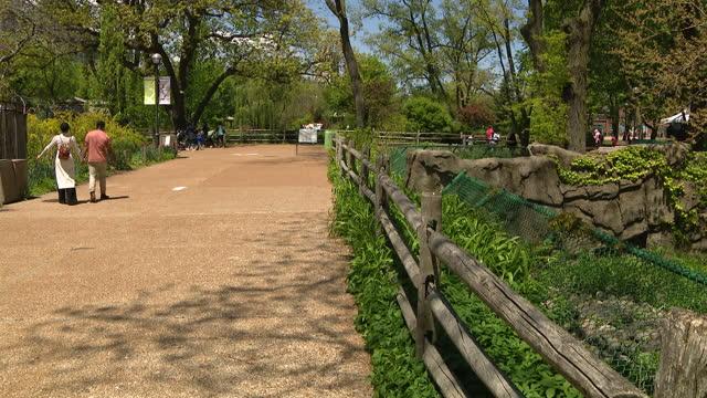 vídeos y material grabado en eventos de stock de chicago, il, u.s. - visitors wearing protective face mask at lincoln park zoo on thursday, may 13, 2021. - zoológico de lincoln park