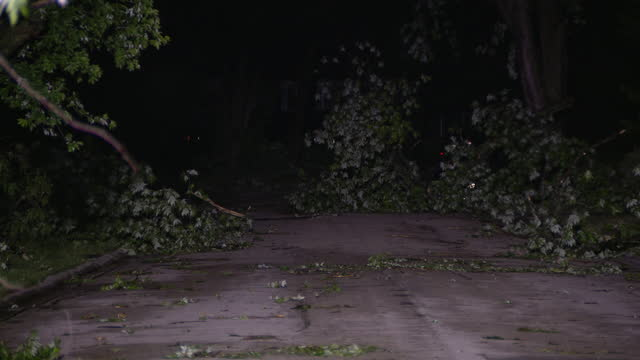 chicago, il, u.s. - woman walking through woodridge neighborhood after it was damaged by tornado on monday, june 21, 2021. - branch stock videos & royalty-free footage